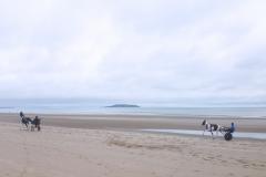 Horses racing on Portmarnock Beach