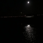 Moonshine Bull Island