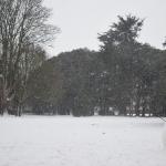 Dublin Snow storm March 2018 - St Annes Park
