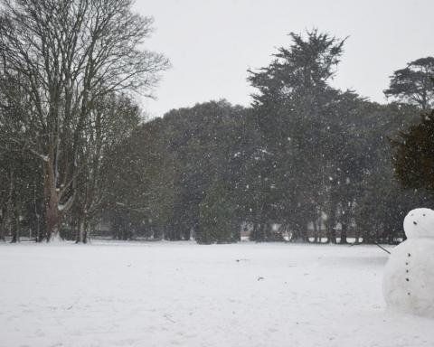 Dublin Snow storm March 2018 - St Annes Park