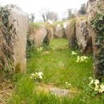 Audleystown Cairn