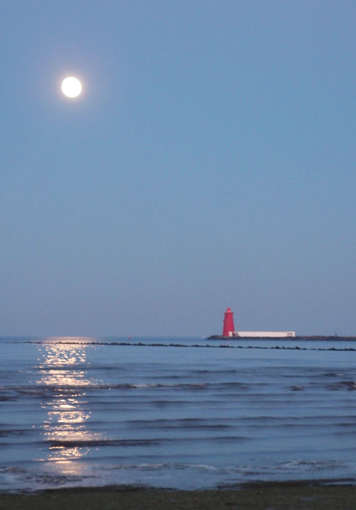 Moonlight on Bull Island