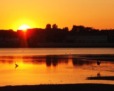 Sunset on Bull Island